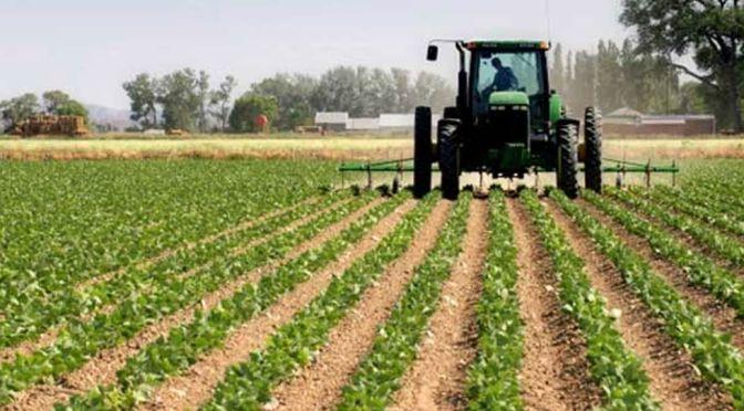 Gobierno financiará agropecuaria con RD$5,000 millones a tasa cero
